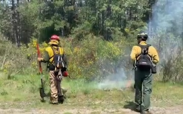 Sorry Smokey - prescribed burns can prevent forest fires, too
