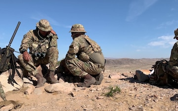 Idaho and Brazilian TACPs Train at NTC
