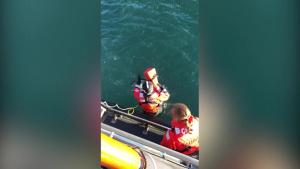 Coast Guard rescues paddleboarder stranded on Bodega Bay jetty
