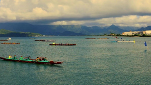 Stroke by stroke through Kaneohe Bay