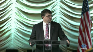 VA, DOD Leaders Discuss Suicide Prevention