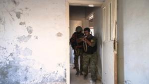 Coalition and partner forces destroy Daesh