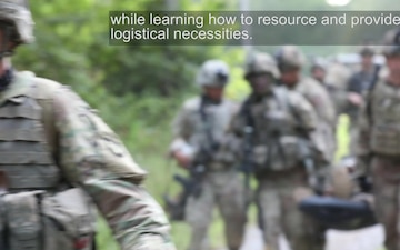 U.S. Army Special Forces partner with Screaming Eagles for raid, reconnaissance exercise