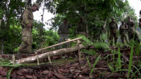 U.S. Marines, Papua New Guinea Defense Force Soldiers Build Bridge Foundations during Koa Moana