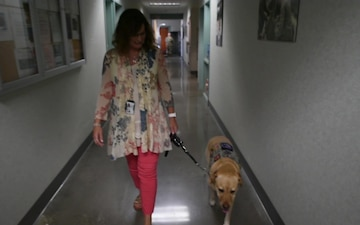 B-Roll of Paige The 144th Fighter Wing's Facility Therapy Dog