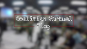 Coalition VIRTUAL FLAG
