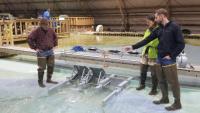 Cutting edge model improves the Fargo-Moorhead Metro Flood Risk Management Project