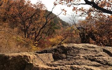 AFN Tries: Bukhansan National Park