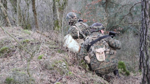 Armed Forces of Bosnia participate in Combined Resolve XIII