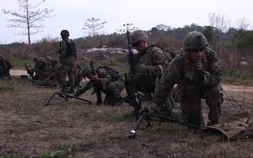 Cobra Gold 20: Royal Thai, U.S. forces conduct bilateral live-fire range (B-Roll)
