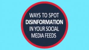 Spotting disinformation in social media feeds