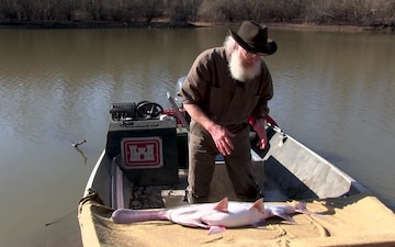 Paddlefish: Anatomy of a Living Fossil