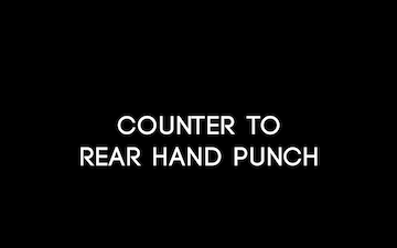 Counter to Rear Hand Punch