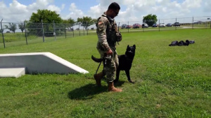 Sheppard Speaks: 82nd Security Forces MWD