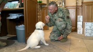 Lincoln the dog joins 185th care team