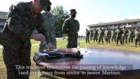 Combat Logistics Battalion 22 Cake Cutting Ceremony