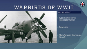 Warbirds of World War II - F8F Bearcat