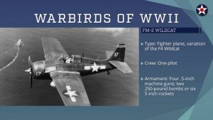Warbirds of World War II - FM-2 Wildcat