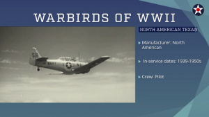 Warbirds of World War II - North American Texan