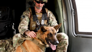 Army Flight Paramedics And Veterinarians Train With K9 Teams