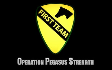 Operation Pegasus Strength Testimonials