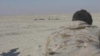 SPMAGTF-CR-CC 20.2: Bilateral precision marksmanship range in UAE