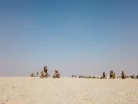 SPMAGTF-CR-CC 20.2: Combined Mortar Training in UAE