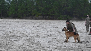 1SOW EOD and SFS MWD Training
