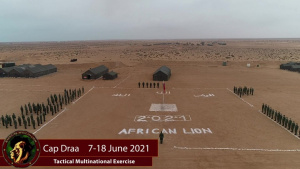 African Lion 21 DV Day Video