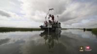 ERDC researches new ways to protect bird habitats in estuaries