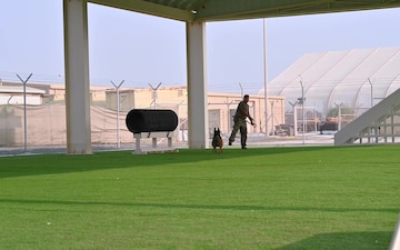Day in the life of an ADAB military working dog handler and his partner.