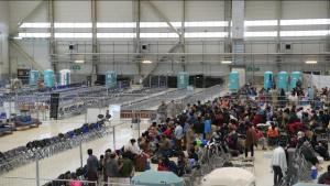 Operation Allies Refuge - Port Dogs