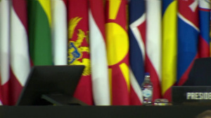 NATO Secretary General at the Annual Session of the NATO Parliamentary Assembly (Q&A part 2/8)