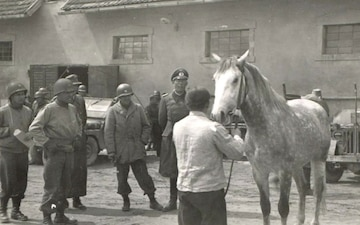 76th Anniversary of the Return of the Lipizzaner Horses
