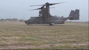 Osprey Lands on Goodfellow