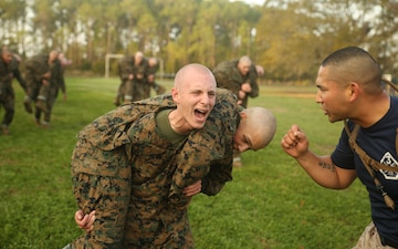 Photo Gallery: Marine recruits endure martial arts course on Parris Island
