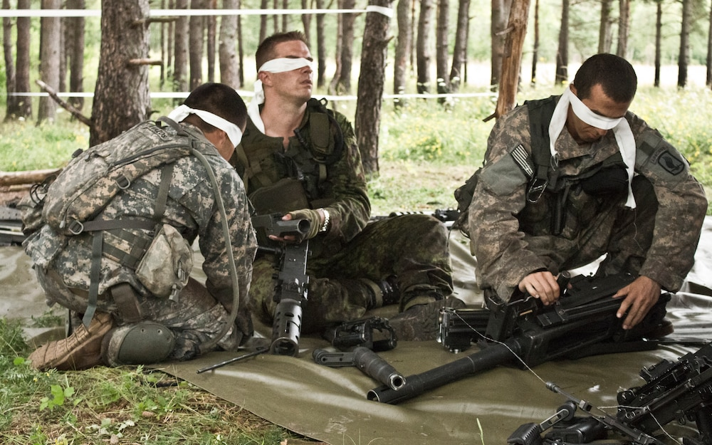 173rd Airborne Soldiers and Estonian scouts earn their spurs