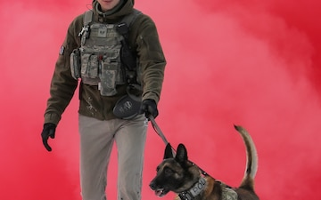 Military working dogs sharpen their skills at JBER