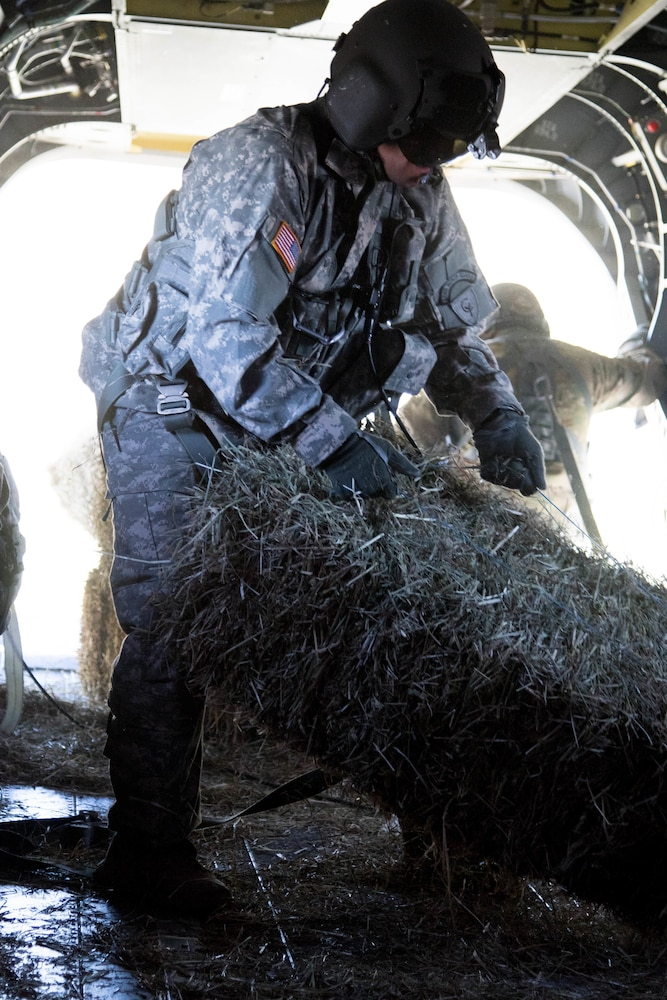 Texas Guard aviator guides helicopter deliveries of hay to stranded cattle in Texas