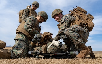 U.S. service members conduct helicopter casualty evacuation training during ARTP 19.4