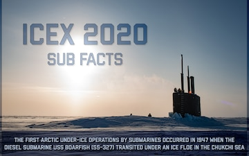 ICEX 2020 Sub Facts