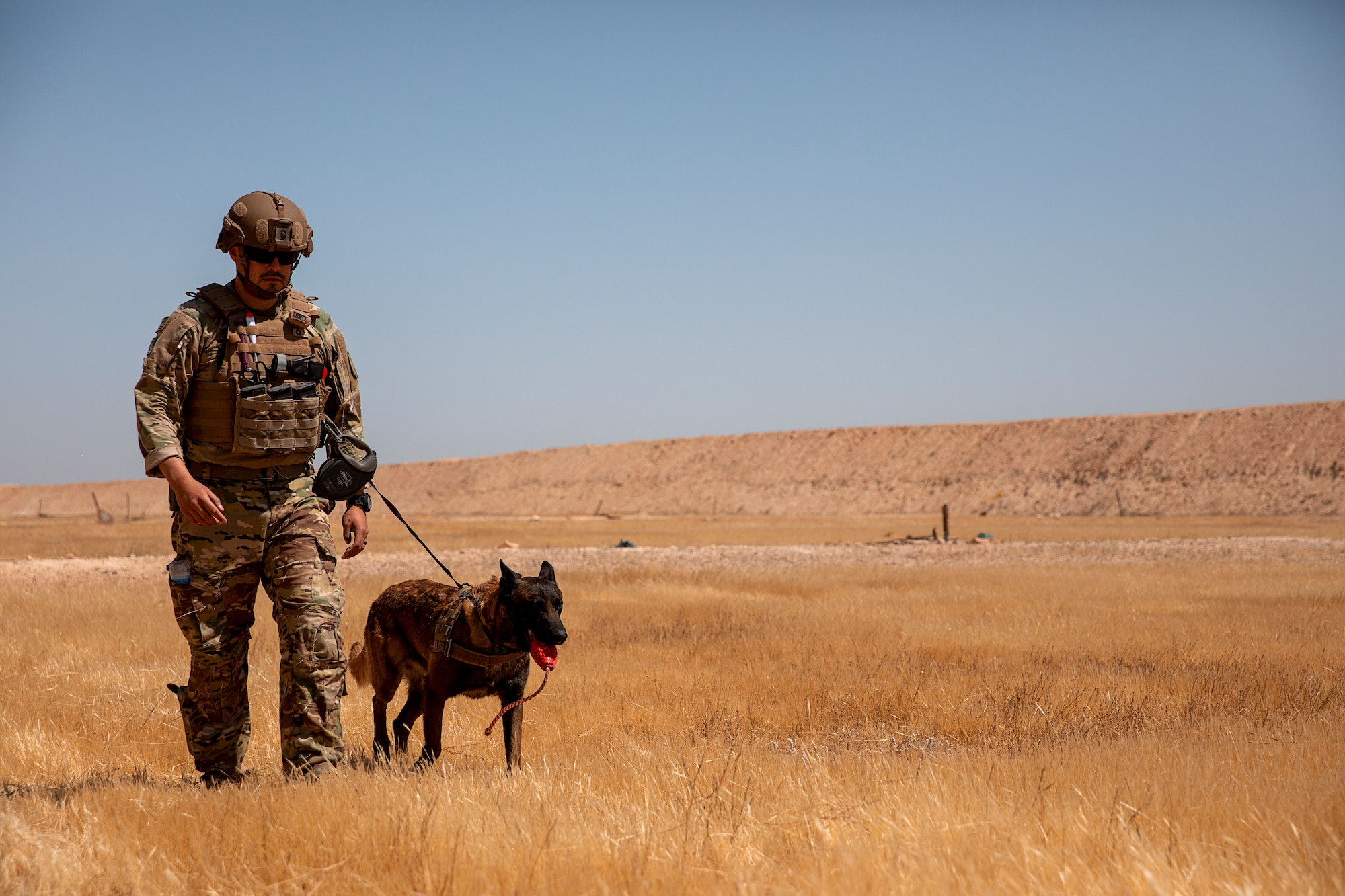 U.S. Soldiers and Military Working Dogs • Live Fire Exercise • Iraq, May 8, 2020