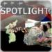 Spotlight Korea