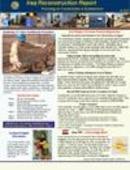 Iraq Reconstruction Report - 01.13.2007