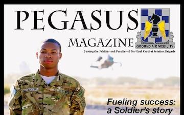 Pegasus Magazine - 12.02.2011