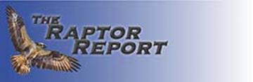 The Raptor Report