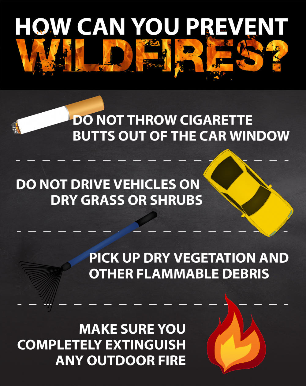 How Can You Prevent Wildfires?