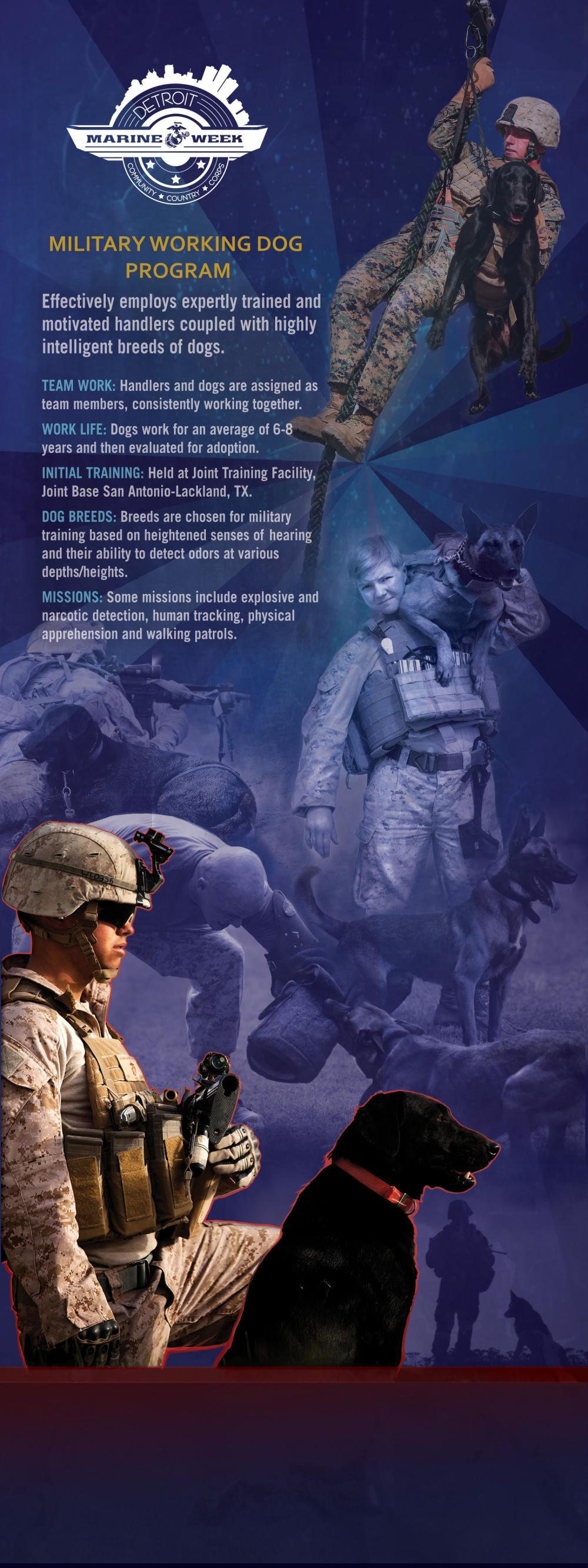 Marine Corps Working Dog Program
