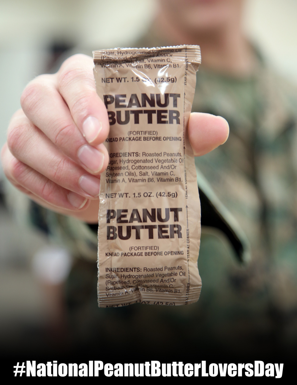 Peanut Butter Lovers Day Poster