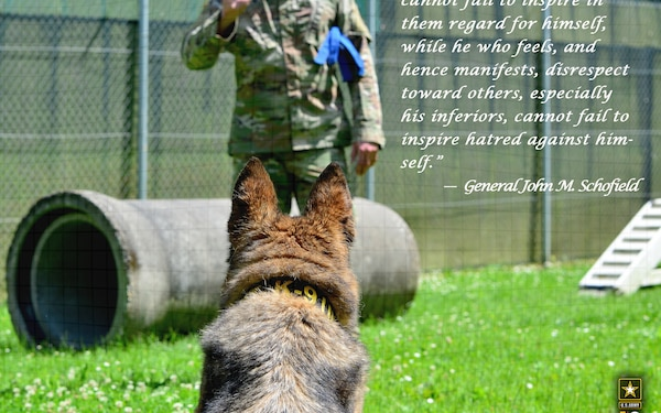 Army values - Respect